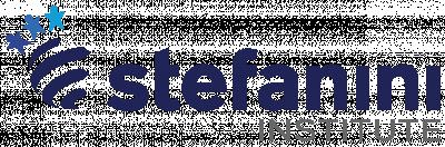 stefanini logo color