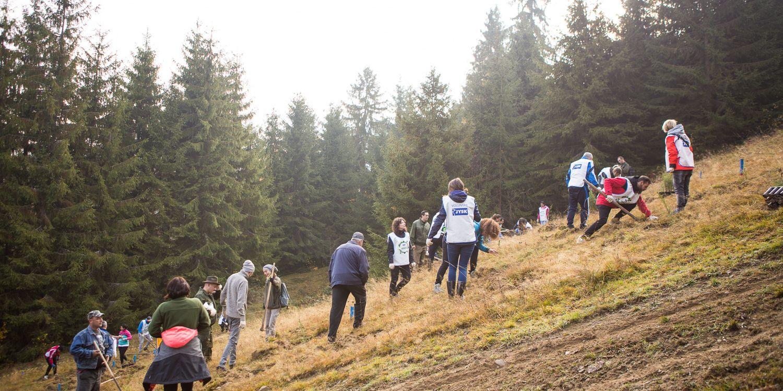 Echipa JYSK la plantarea padurii de la Rosia Montana 2019